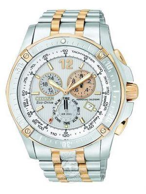 Mens Citizen Perpetual Calendar BL5376-55A Watch