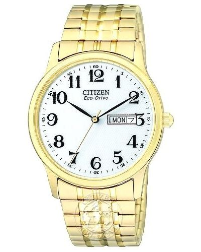 Mens Citizen Gents Expansion BM8452-99A Watch