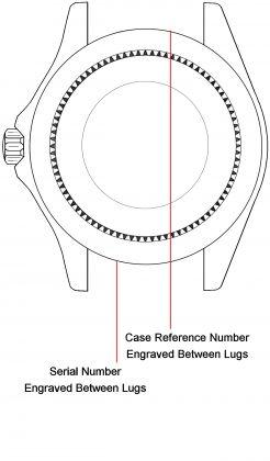 Rolex watch case back - repairs servicing